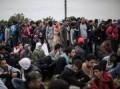 italie-immigration-300x224